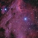 IC5070- Pelican Nebula,                                Gene