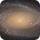 M81 up close and personal,                                Pyrasanth