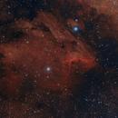 IC 5070 Pelican Nebula,                                Alberto Pisabarro