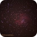 Rosette Nebula with the open cluster NGC 2244 in the constellation Monoceros,                                Hans-Peter Olschewski