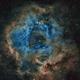 Rosette Nebula in SHO,                                Andrew Barton