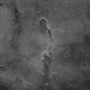 IC1396,                                Thomas Frisch