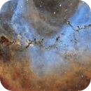 NGC 2237 Rosette Nebula - Review of Dust and Bok Globules,                                Paddy Gilliland