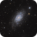 NGC 2403 - Intermediate Spiral Galaxy in Camelopardalis,                                lefty7283