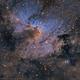 "sh2-155 ""Cave Nebula"" - SHO,                                José Tapia Janet"