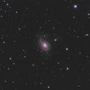 NGC772 LRGB,                                Christopher Gomez