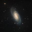 NGC2903,                                Kevin Parker