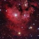 NGC7822 THE DEVILS HEAD,                                Péter Feltóti