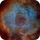 The Rosette Nebula - Hubble Palette with SHO Stars,                                Eric Coles (coles44)