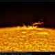 AR 12565 on the Sun limb - 24.07.2016,                                Łukasz Sujka