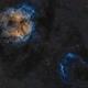 Elephant Trunk Nebula - Widefield,                                nerdybeardo