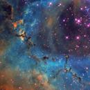 Rosette Nebula (NGC2237),                                Andrea Ferri