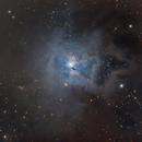 NGC 7023 The Iris Nebula,                                Ron Stanley