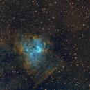 Sh2-206/NGC 1491 in SHO,                                Goofi
