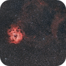 Rosette and Cone Nebulae Samyang 135mm f/2.8,                                Elmiko