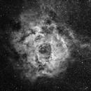 """Rosette Nebula - Ha 8*1200"""",                                Giambattista Rizzo"""