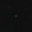 NGC 2903,                                Maciek Jarmoc