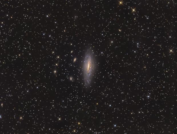 NGC 7331  Peg,                                GJL