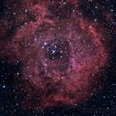 NGC2244 HALRGB,                                Henry Westrich