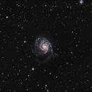 M101,                                Kevin Knapp