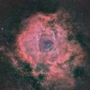 Rosette nebula,                                SkyEyE Observatory
