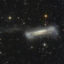 NGC 3628 - The Hamburger Galaxy and its tidal tail,                                Frank Breslawski