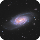 NGC2903,                                Rich Sornborger