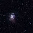 M101,                                Astrofotografia A.R.B.