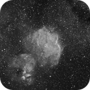 IC2872_Gum39_Ha,                                Rodney Watters