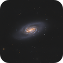 NGC2903 - Field Barred Spiral Galaxy / 2020,                                Mikko Viljamaa