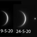 "Venus (with a sneaky Mercury"" May 2020,                                Steve Ibbotson"