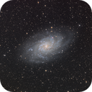 M33 LRGB,                                J. Norris