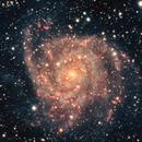 IC342 - The Hidden Galaxy,                                Chris Bulik