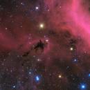 LDN 1622,                                Pleiades Astropho...