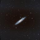 Sculptor Galaxy,                                Daniel Hightower
