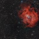 Rosette nebula (NGC 2244),                                Lukas Šalkauskas