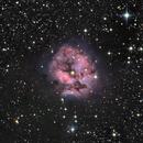 The Cocoon Nebula (IC 5146),                                Olivier Ravayrol