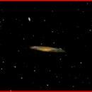 NGC 3079  Galaxy,                                AlBroxton