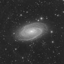 M81 Luminance,                                LAMAGAT Frederic