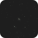 M102, The Spindle Galaxy,                                doug0013