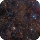 Iris Nebula Wide Field,                                Rogelio Bernal Andreo