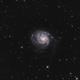 M101 HaLRGB,                                Bernd Steiner