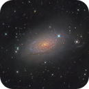 M63 - Sunflower Galaxy,                                Maarten Rolefes