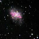 M1 Crab Nebula,                                Mike Pelzel