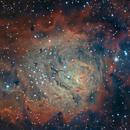 The Lagoon Nebula (M8),                                Josh Woodward