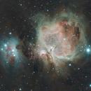 M42,                                Leips