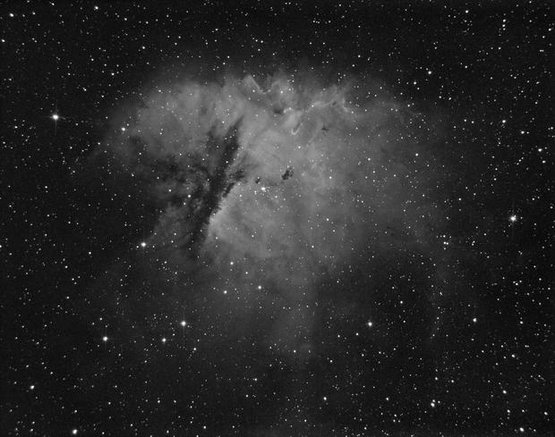 NGC-281 in Ha,                                Joel Shepherd