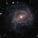 Messier 83 on ASI120mm,                                Samuel Müller