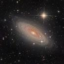 NGC 2841 (Reprocessed),                                KuriousGeorge