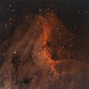 IC5070 - The Pelican Nebula - Narrowband Bicolour,                                Roberto Botero